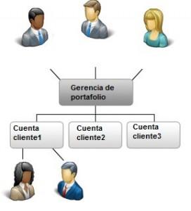 Cuentas individuales